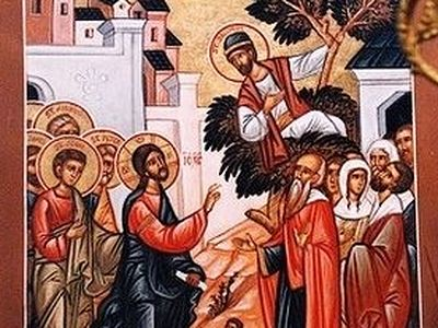 Sermon on the Gospel of the Sunday of Zacchaeus