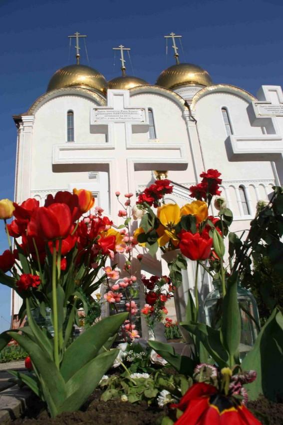 Успенский собор весной
