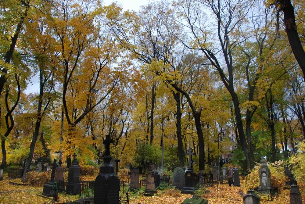 В тиши могил