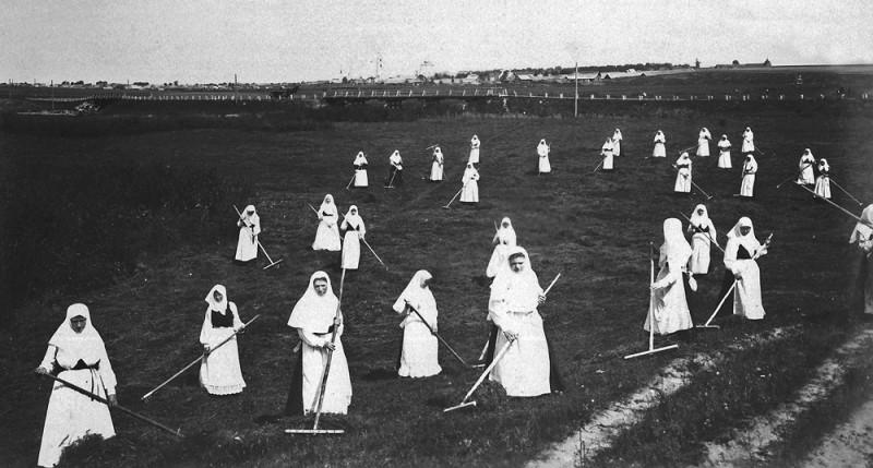 Труды сестер на сенокосе
