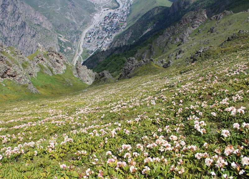 Вид с вершины Тотура