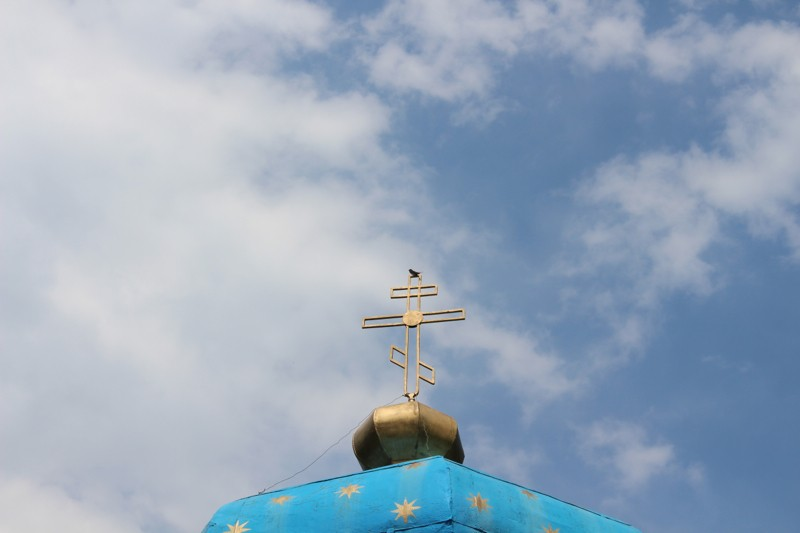 Ласточка на куполе