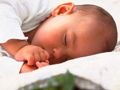 Законопроект о регулировании суррогатного материнства подготовят в Госдуме