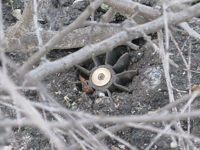 Mortar fallen near a church in the Lugansk region did not explode