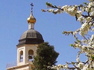 Библейский сад будет разбит на подворье Русской Духовной Миссии в Хевроне