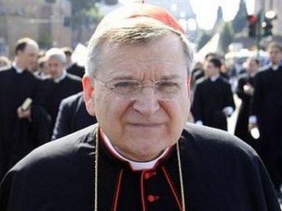 Кардинал Бёрк: «Ирландия пошла дальше, чем язычники»