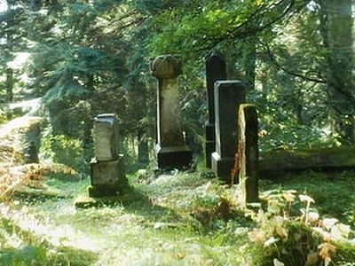 Police identify cemetery vandals as group of juveniles