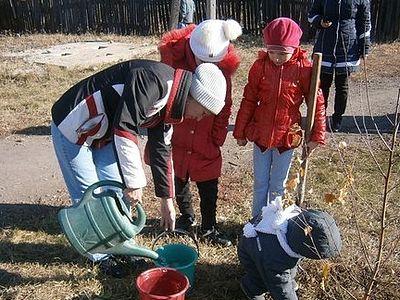 Учащиеся воскресной школы в Горловке посадили берёзовую рощу