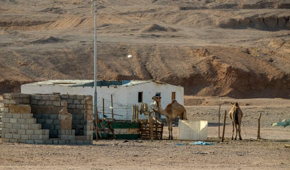 Поселки бедуинов