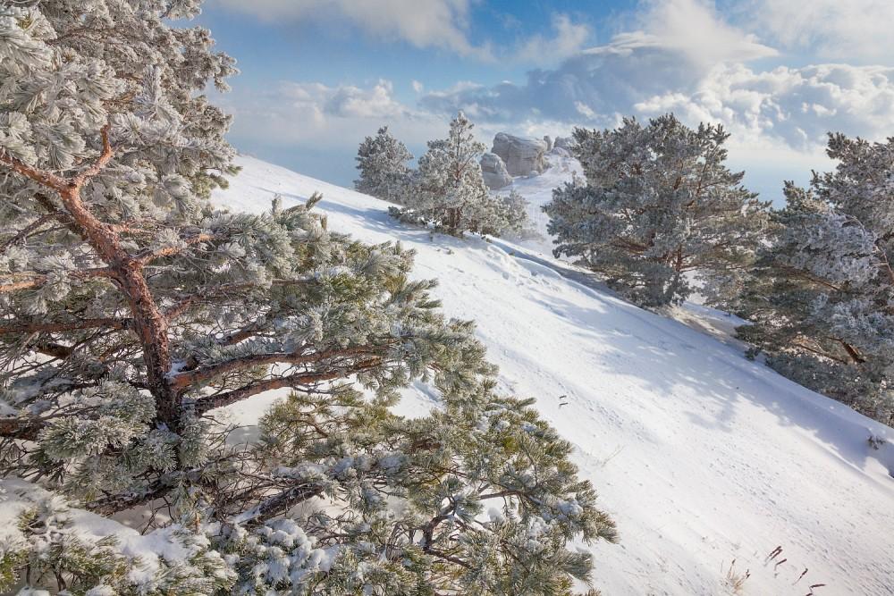 The Crimea in winter