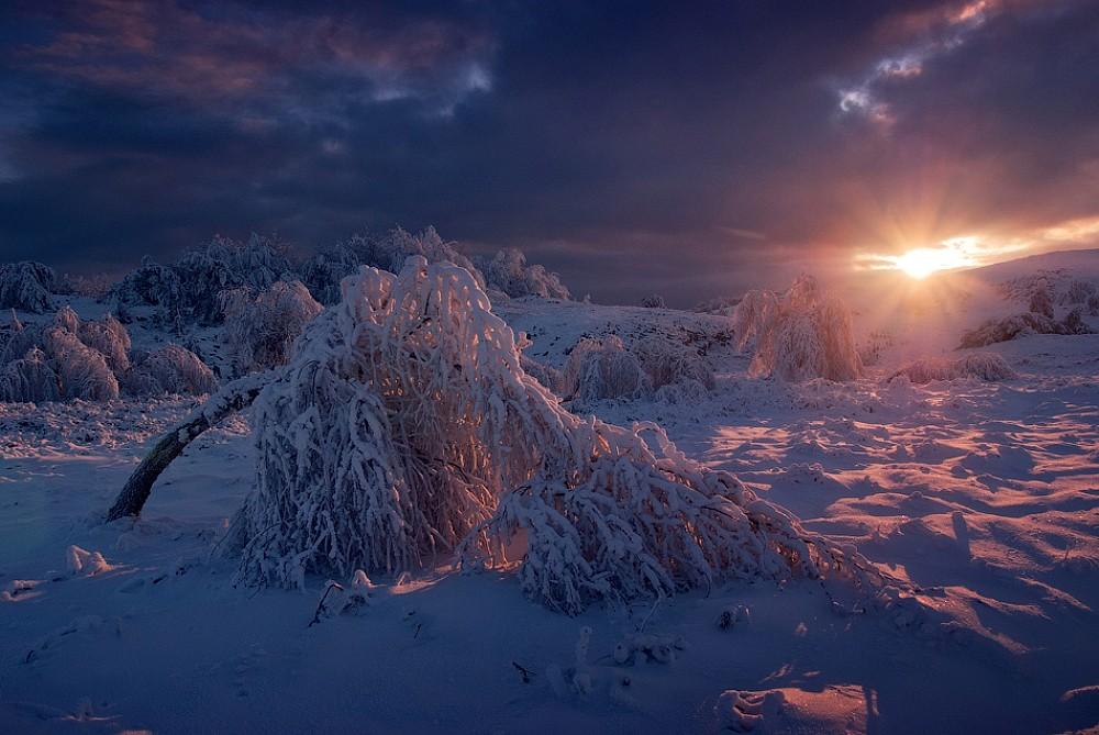 http://pravoslavie.ru/sas/image/102250/225081.b.jpg?1514195939.jpg