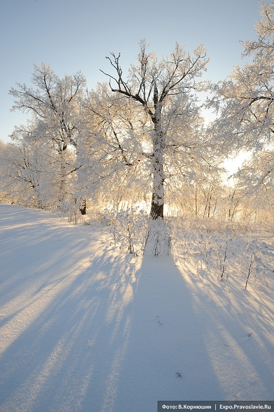 Frost and the sun