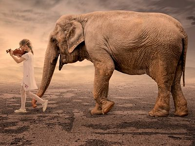 Укрощение внутреннего слона