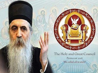 Епископ Бачский Ириней: Члены собора не имели права голоса