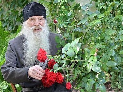 Сад неувядаемых цветов: труды и дни